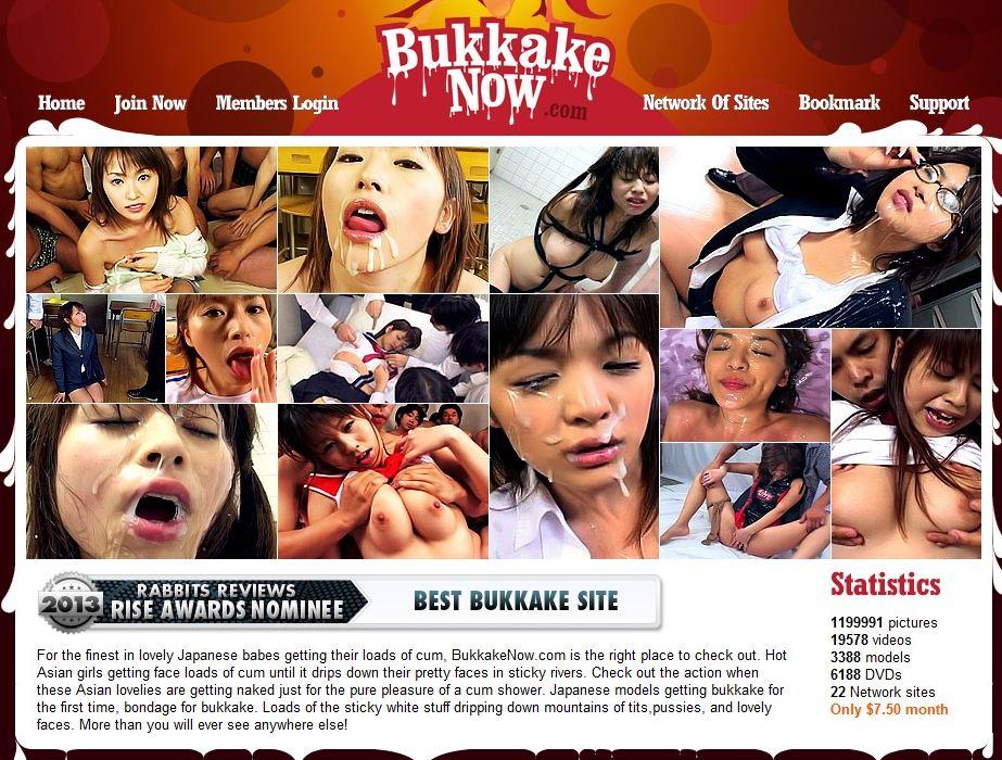 preview image of members.bukkakenow.com