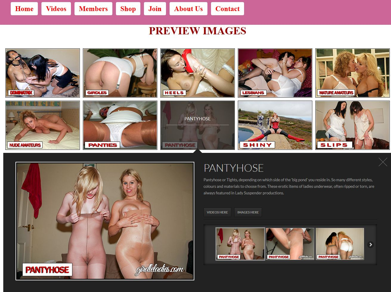 ladysuspender passes   daily updated and tested porn passes for